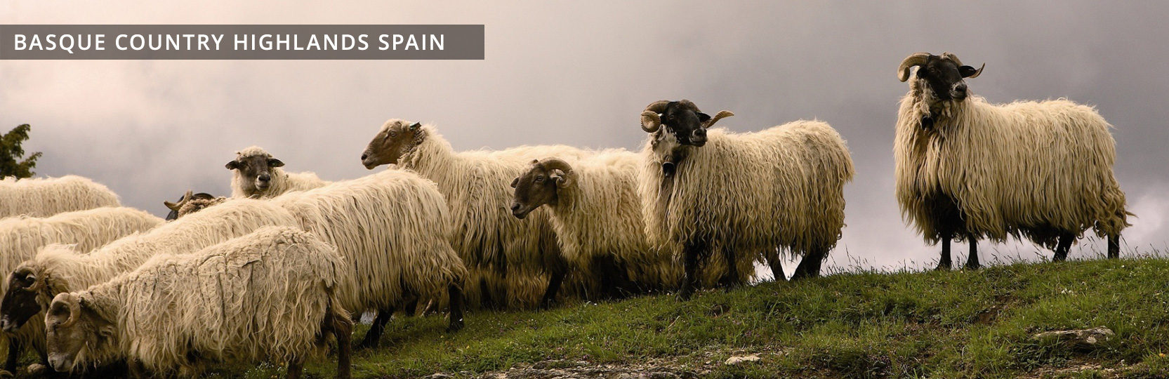 Just Follow Me Basque Country Highlands Spain